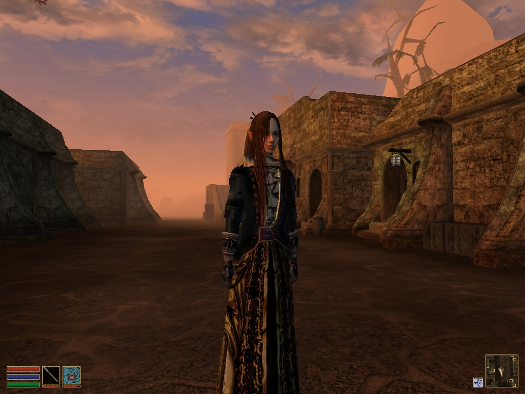 My Current Morrowind Character