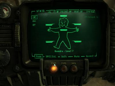 The Pip Boy Screen