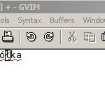 Enabling Polish Letters (Ogonki) in Vim
