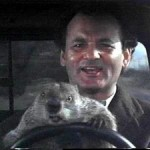 Groundhog Day Plan