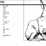 Bizarre Bestiary: The Dreaded Duckbunny
